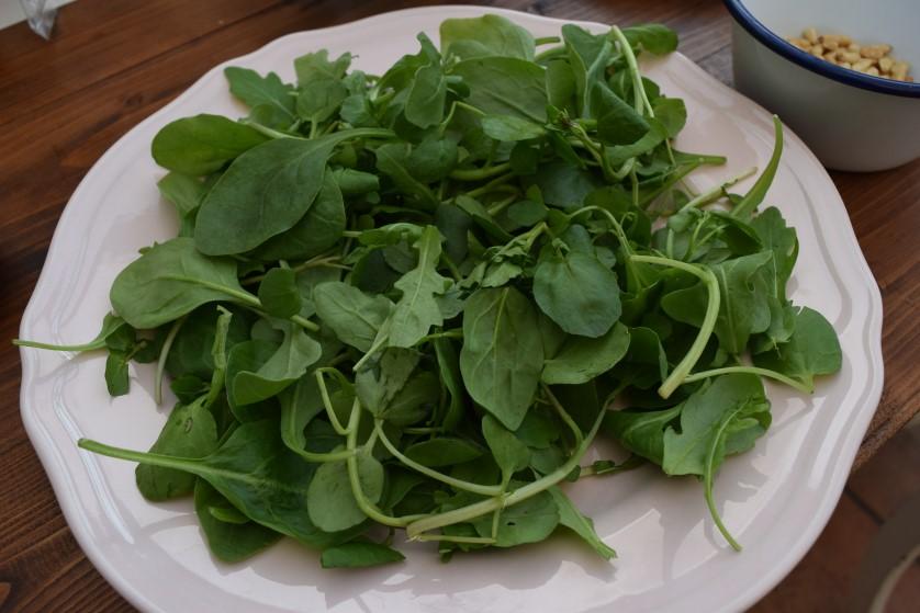Avocado-pine-nut-chorizo-recipe-lucyloves-foodblog