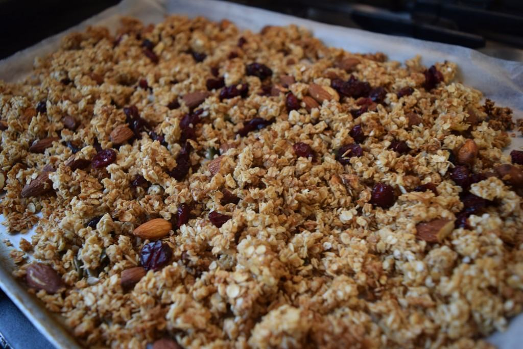 Almond-coconut-cranberry-granola-lucyloves-foodblog