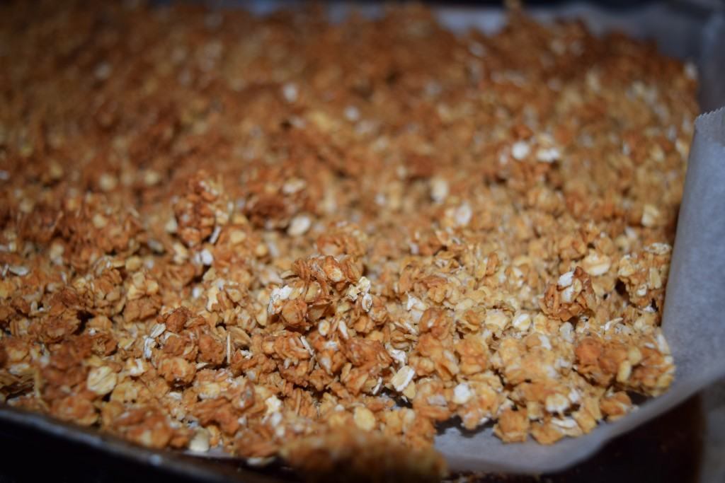 Peanut-butter-honey-granola-lucyloves-foodblog