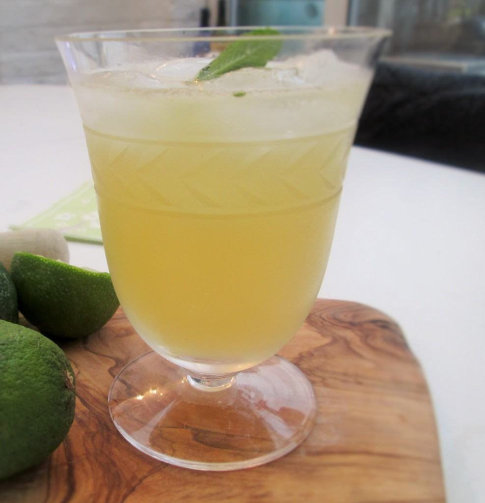 Apple-gin-elderflower-mint-cocktail-lucyloves-foodblog