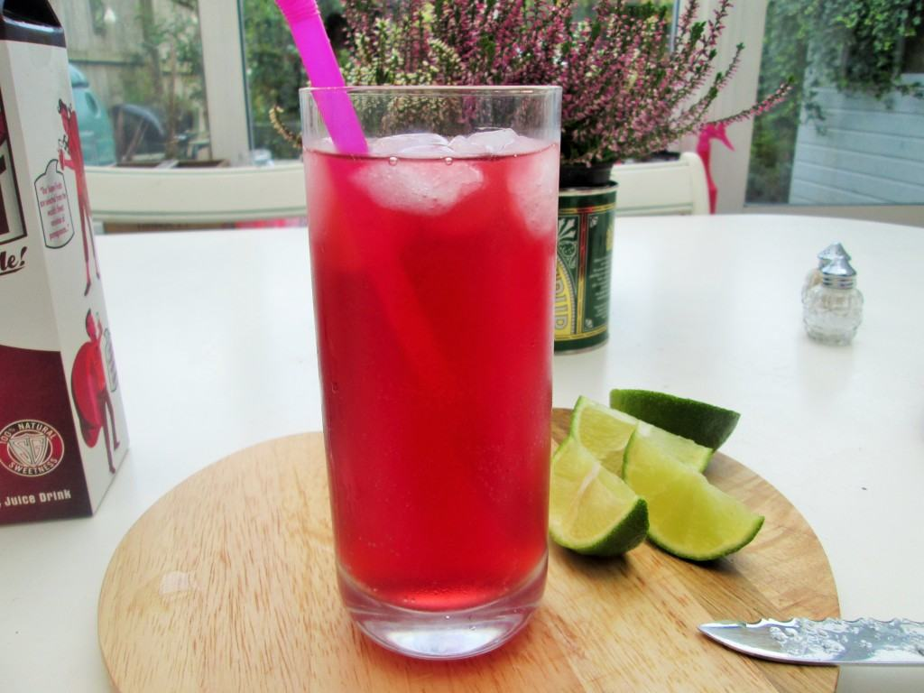 Pomegranate-gin-and-tonic-lucyloves-foodblog